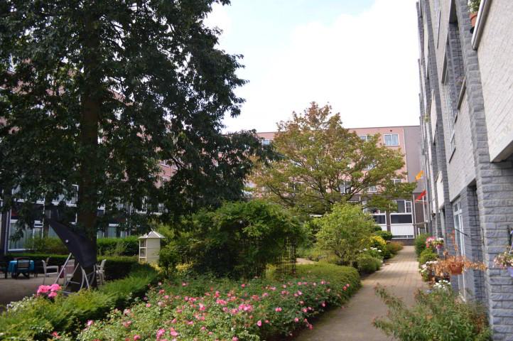 Natuur bij zorgcentrum Pennemes