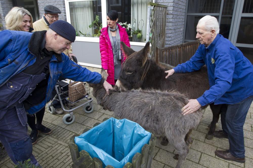Kerststal van Pennemes met clienten en dieren