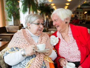Afbeelding bij 'Stichting Humanitas'