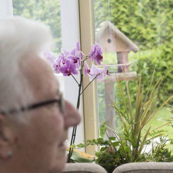 Afbeelding bij 'Alzheimer-Architecture: architectuur die leidt tot meer interactie, beweging en ontspanning'