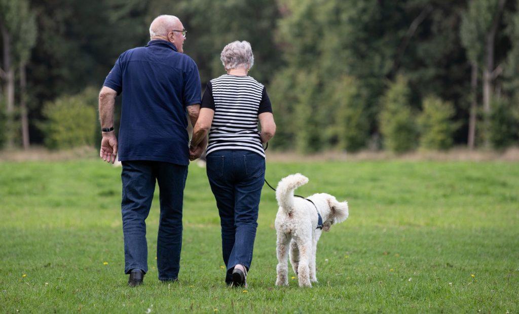 mensen met dementie wandelen met hond