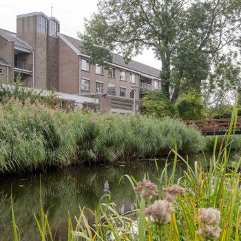 Afbeelding bij 'Regio Midden-Brabant'
