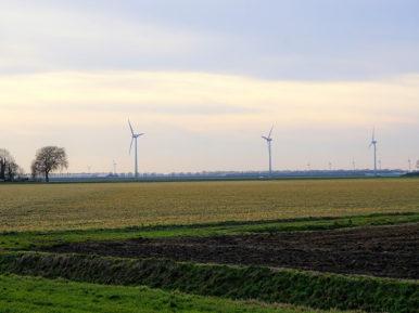 Afbeelding bij 'Regio Flevoland'
