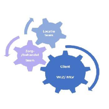 Afbeelding bij 'Kwaliteit: Infographic beleidscyclus'