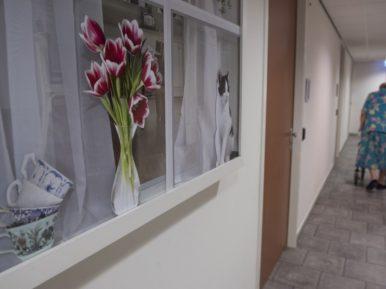 Afbeelding bij 'Brede coalitie 'De Zorgzame Buurt' maakt ouderenzorg in Stede Broec ..'